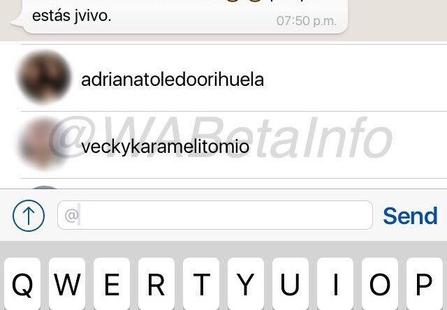 whatsapp beta grupos