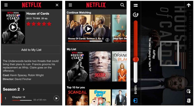 Netflix visionado offline